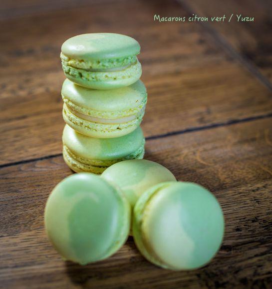Macarons-bicolores-1 ok